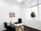 Mykoly Hrinchenko Street Office Space