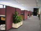 Westmoreland Office 1
