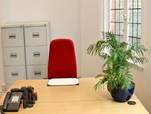 Harley Street Office images